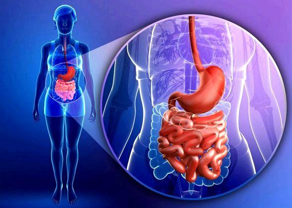 Как очистить кишечник в домашних условиях быстро и эффективно противопоказаны при кровотечениях