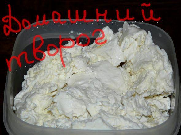 Как сделать творог из молока в домашних условиях Творог из магазинного