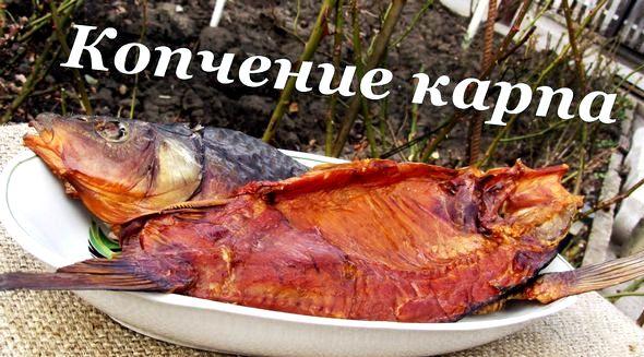 Копчение рыбы в домашних условиях в коптильне горячего копчения Ее можно увеличить, предварительно просаливая